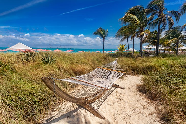 best backyard hammock with stand