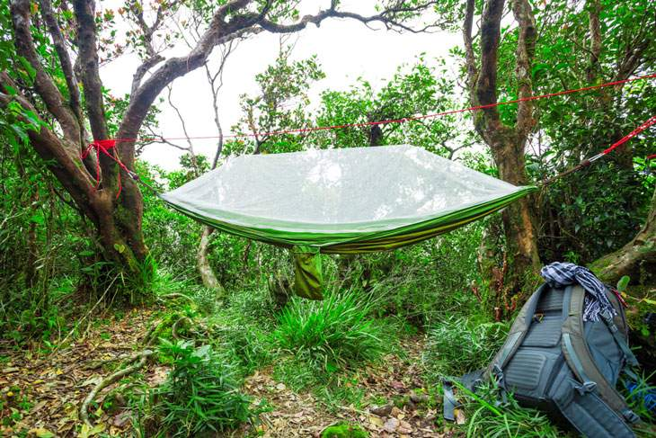 Having a Net Built Into Your Hammock